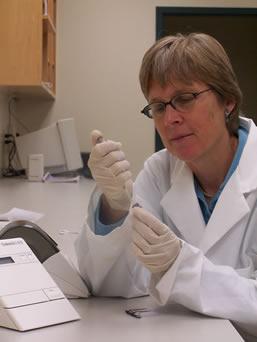 Kathryn Witt, PhD, RD, LDN